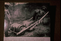 Finsk tjæremile hest trækker tjæretønder gammel